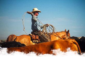 Voyage à cheval aux Etats-Unis