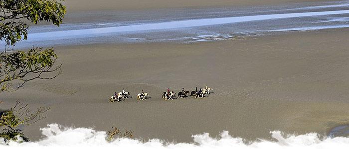 A cheval en bord de mer en France
