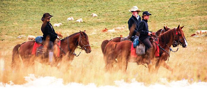 La campagne à cheval en France
