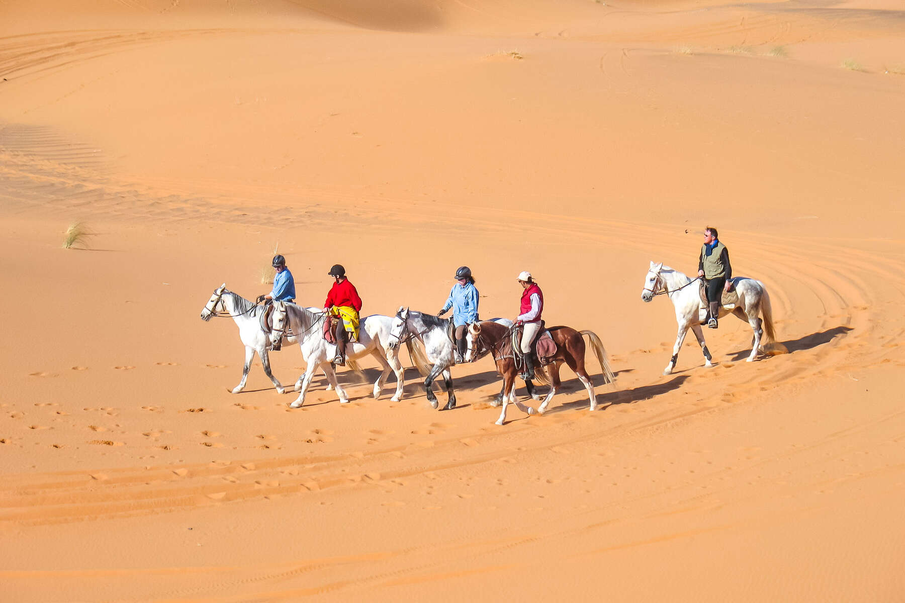 Les Randonnees A Cheval Dans Le Desert Marocain Cheval D Aventure