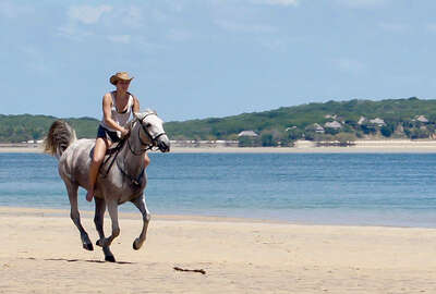 Mozambique à cheval