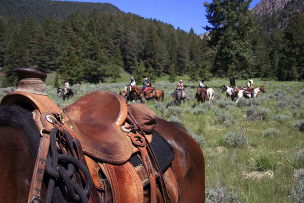 Selle western convoyage chevaux Idaho